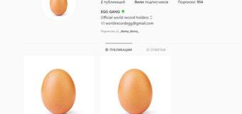 Страница куриного яйца стала рекордсменом Instagram