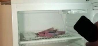 В Полтаве чиновник прятал взятку в холодильнике