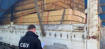 На Закарпатті викрили схему незаконного вивезення деревини за кордон