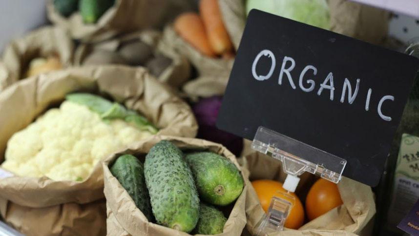 В Україні набув чинності закон про органічну продукцію