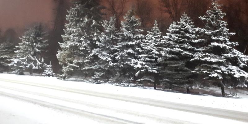 Из-за снегопадов в пяти областях Украины ограничено движение на дорогах