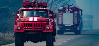 Радиоактивный дым от пожаров в Чернобыле может дойти до Киева