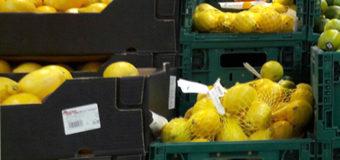 Українцям розповіли, чому в країні не вистачає лимонів та гречки