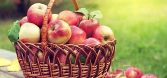 Что можно и что нельзя делать в Яблочный Спас 2020
